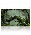 Cuadro de bosque misterioso