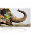 Cuadro elefante con pintura